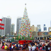 Christmas Carols in Sydney